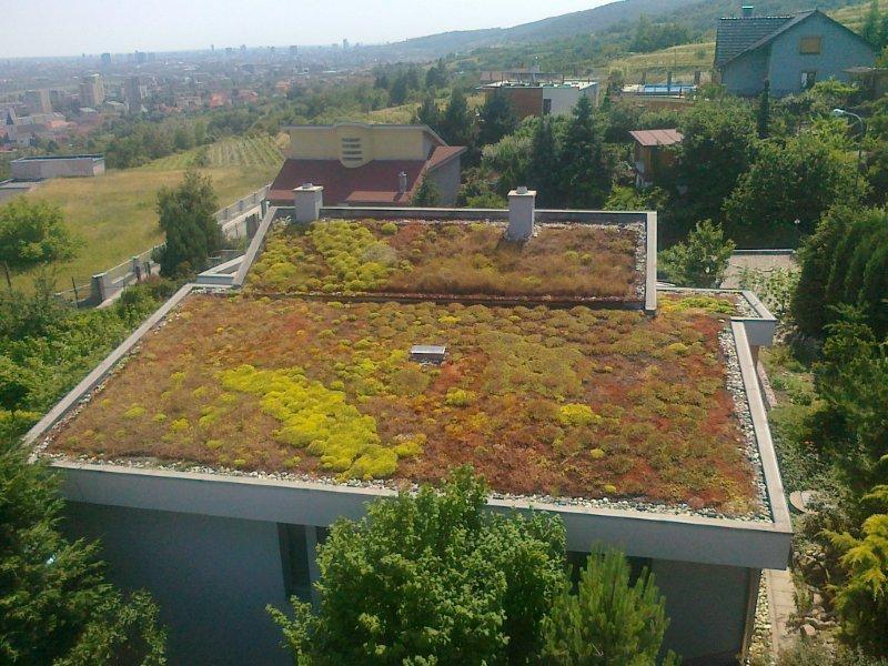Dach wegetowany, membrana Fatrafol